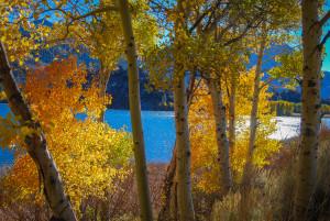 Gull Lake Campground (10/27/15) Alicia Vennos