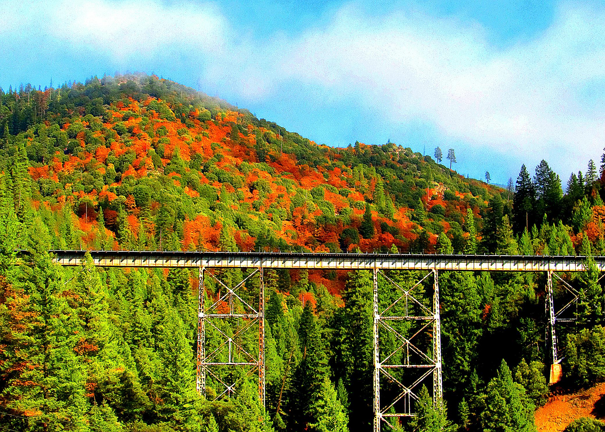Train Spotting Meets Color Spotting – California Fall Color
