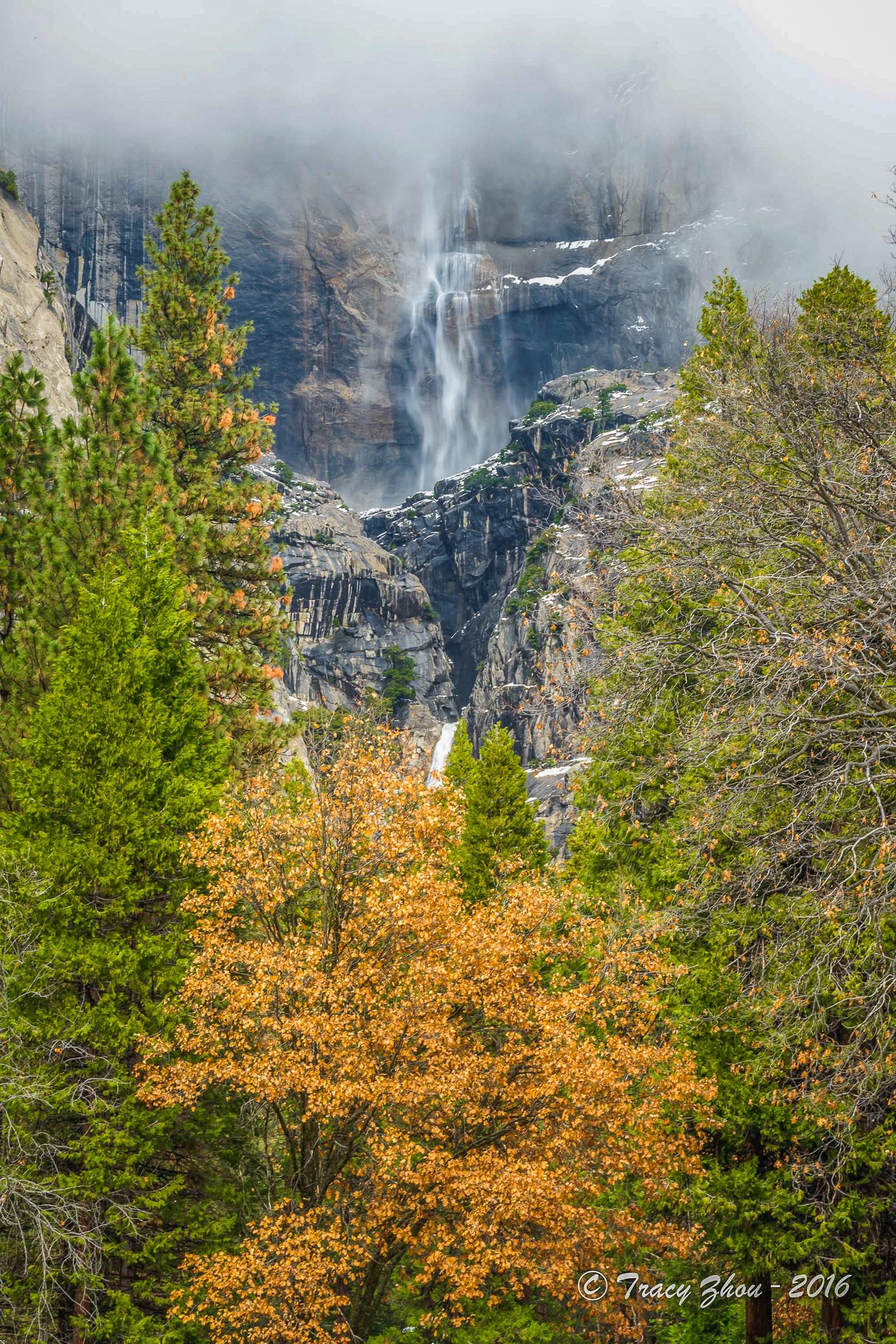 Yosemite: Snow White, Fairytale Forest - California Fall Color