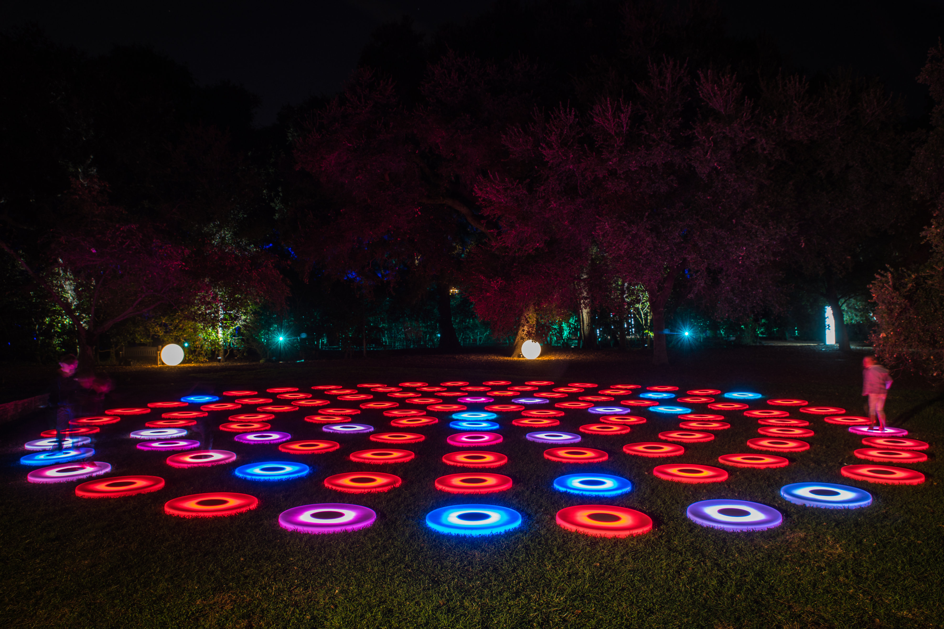 La s descanso gardens becomes an enchanted forest for Garden pool lights