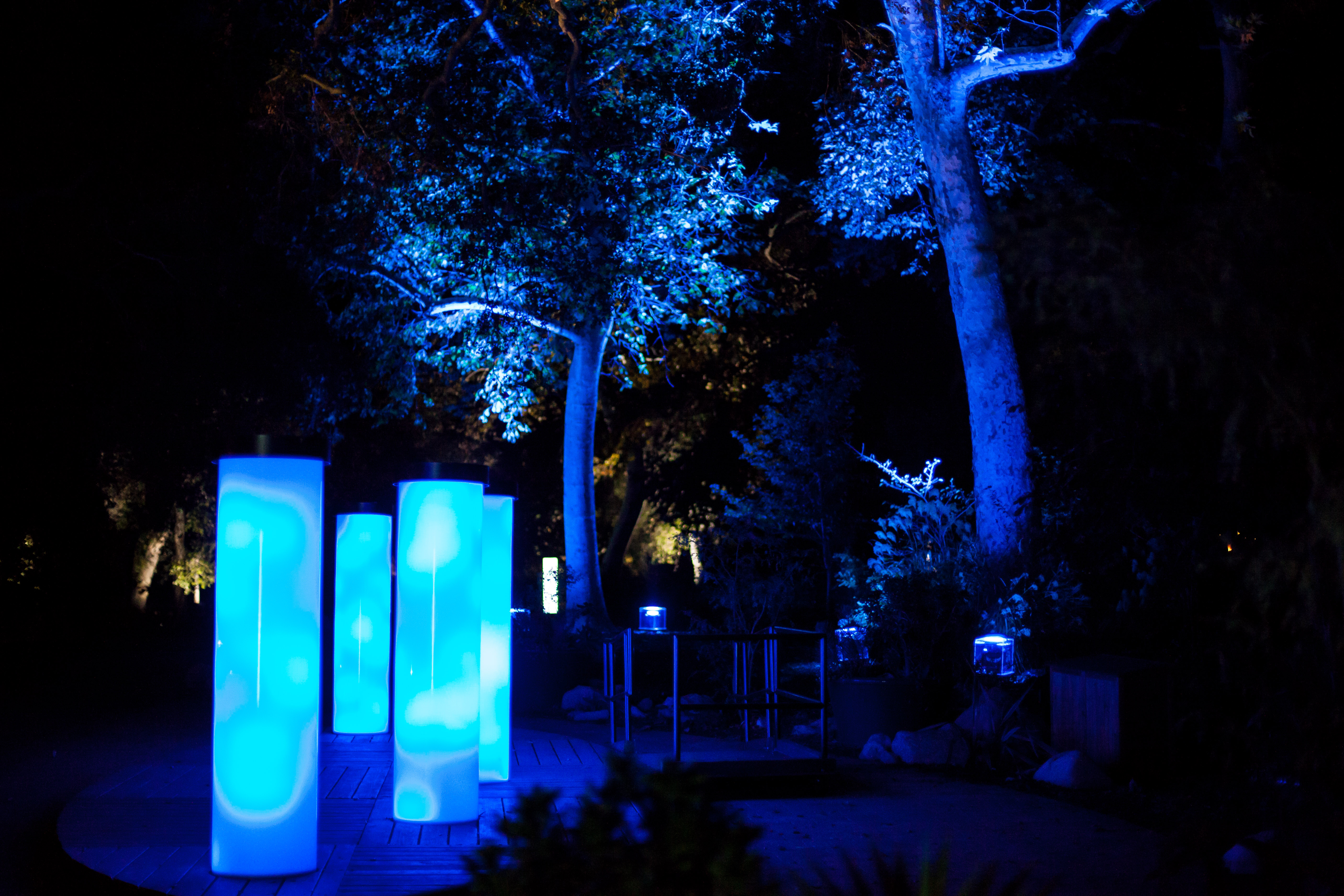 La S Descanso Gardens Becomes An Enchanted Forest